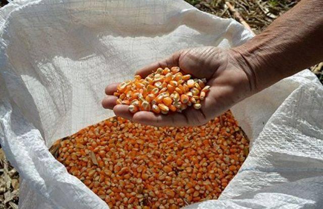 Produtores rurais das Missões recebem anistia do governo no programa Troca-Troca
