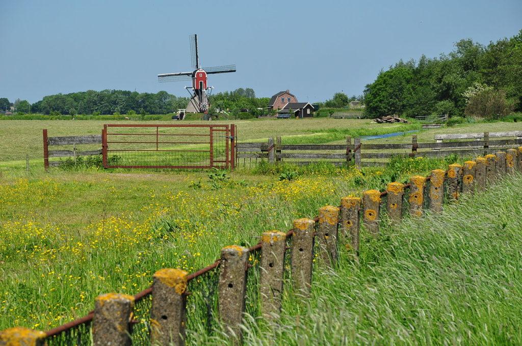 The mill at Rijnwoude on the Lagenwaardse Polder (Photo-Vincent van Zeijst, Wikimedia Commons)