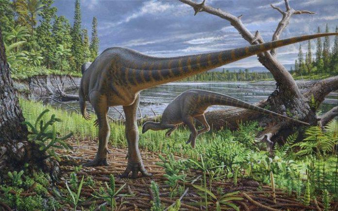 Pickering's flood-running dinosaur.