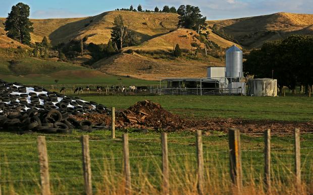 Dairy farm at Apiti, Manawatu.