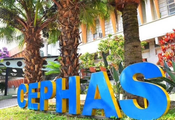 Cephas tem 450 para cursos EAD neste primeiro semestre