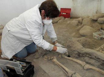Inspecciona INAH restos del padre Eusebio Kino