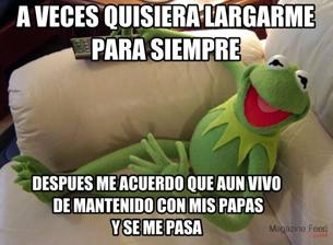 estos-son-los-memes-mas-famosos-en-mexico-en-2014-3