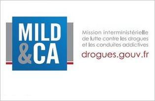 Lutte-contre-la-Drogue-et-les-Conduites-Addictives-MILDECA-Appel-a-projets-regional-Mildeca-2015_large