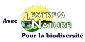 logo lestremnature