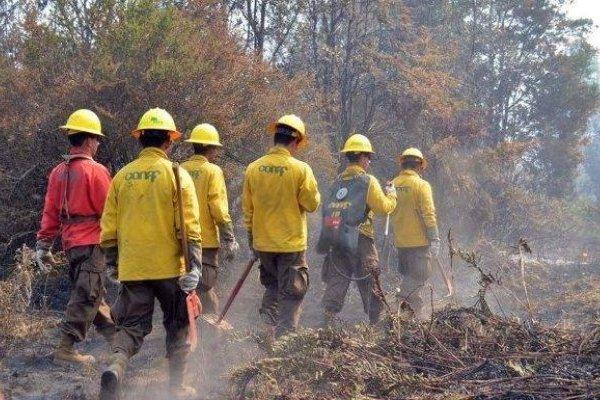 Abren postulaciones para brigadistas de incendios forestales en provincia de Osorno - Radio Sago