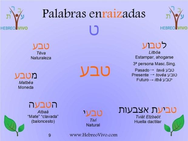 hebreotava