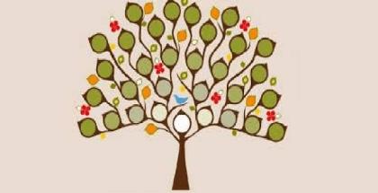 ambol-genealogico