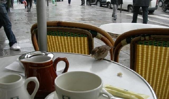 Un café…ashkensfardí, con Marisa Lineal y Mercedes Bendahan