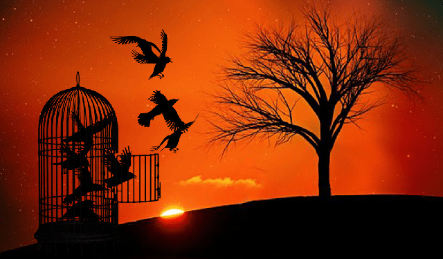 Libertad, libertad, libertad! (…y libertad) | Radio Sefarad