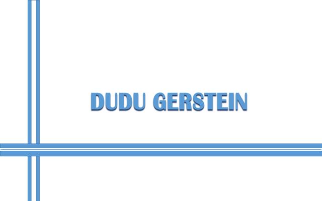 Dudu Gerstein: más allá del color
