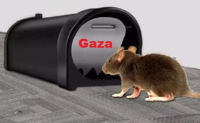 """Gaza: la """"trampa para ratones"""" de Israel, con Marcelo Kisilevsky"""