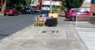 free perabut