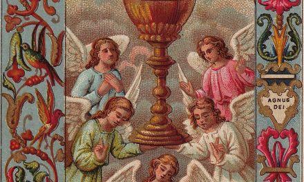 La trascendenza di Dio-Amore nel Mistero Eucaristico (seconda parte)