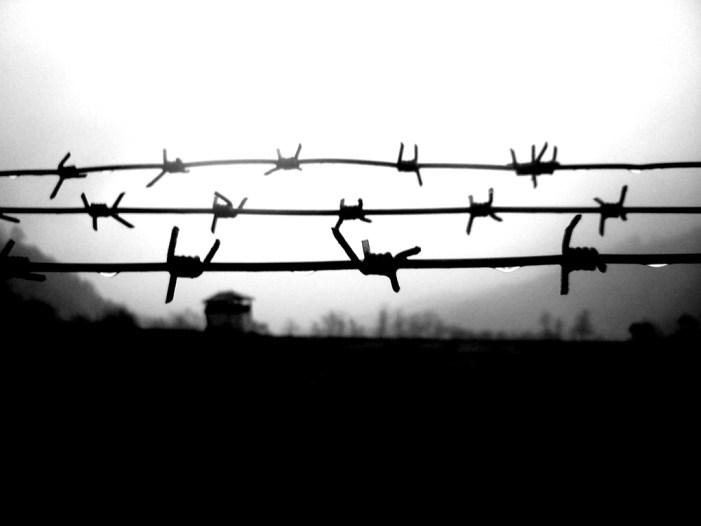 L'onda lunga dell'antinegazionismo