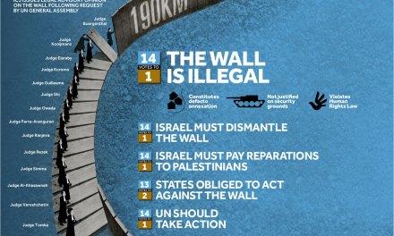 [DA VEDERE] Il Muro in Palestina: fatti e numeri