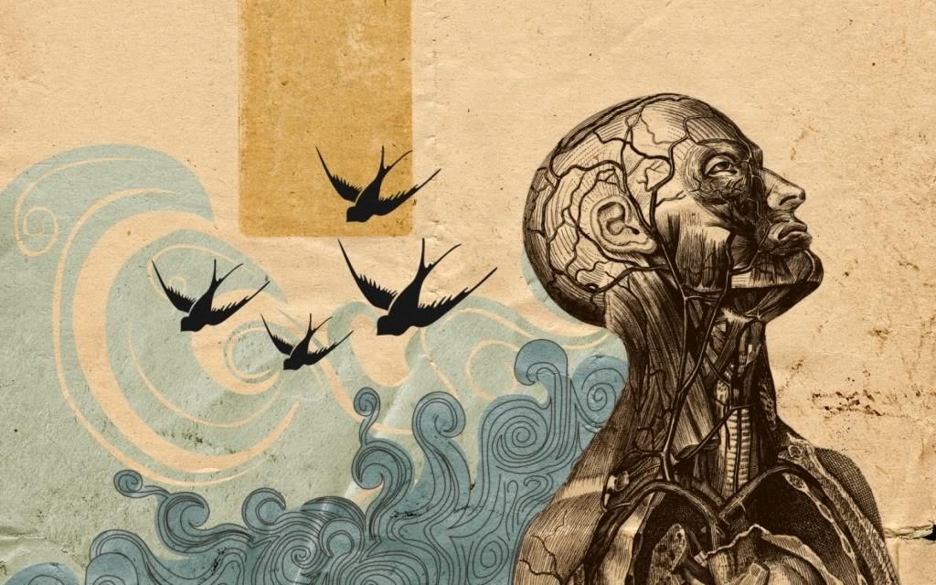 darwinismo-neurale