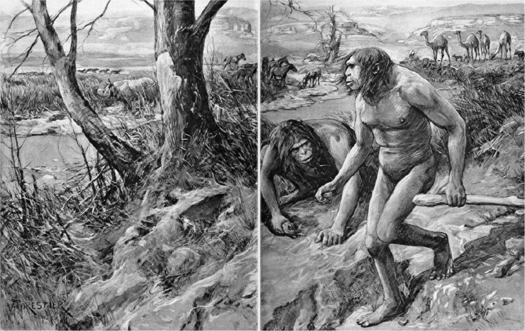Nebraska Man. Celebrato scientificamente anche come Hesperopithecus haroldcookii (dal nome del suo scopritore Harold Cook). Doveva essere l'anello di congiunzione. Il reperto cui faceva riferimento era un singolo dente, che poi si scoprì essere stato perso da un suino.