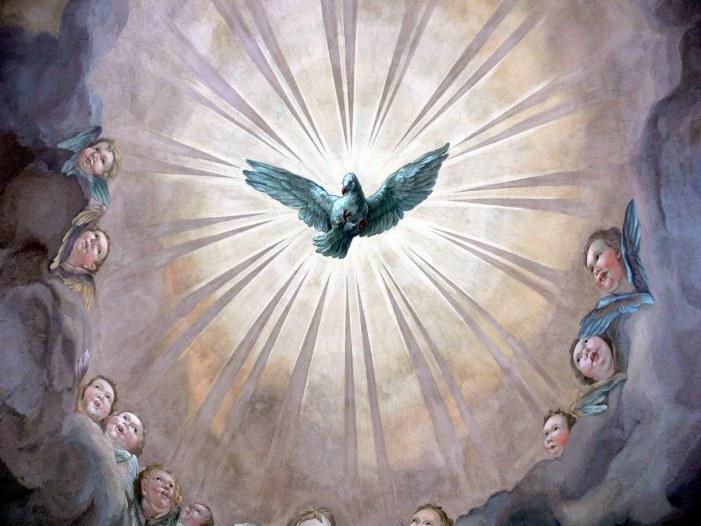 Per mezzo della grazia siamo fatti partecipi alla santità della natura divina