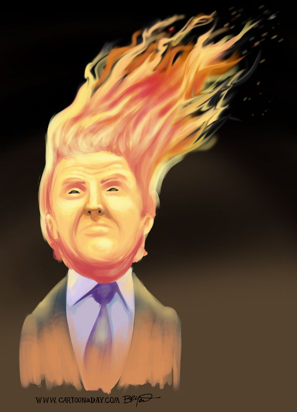 Ha vinto Trump e io godo.