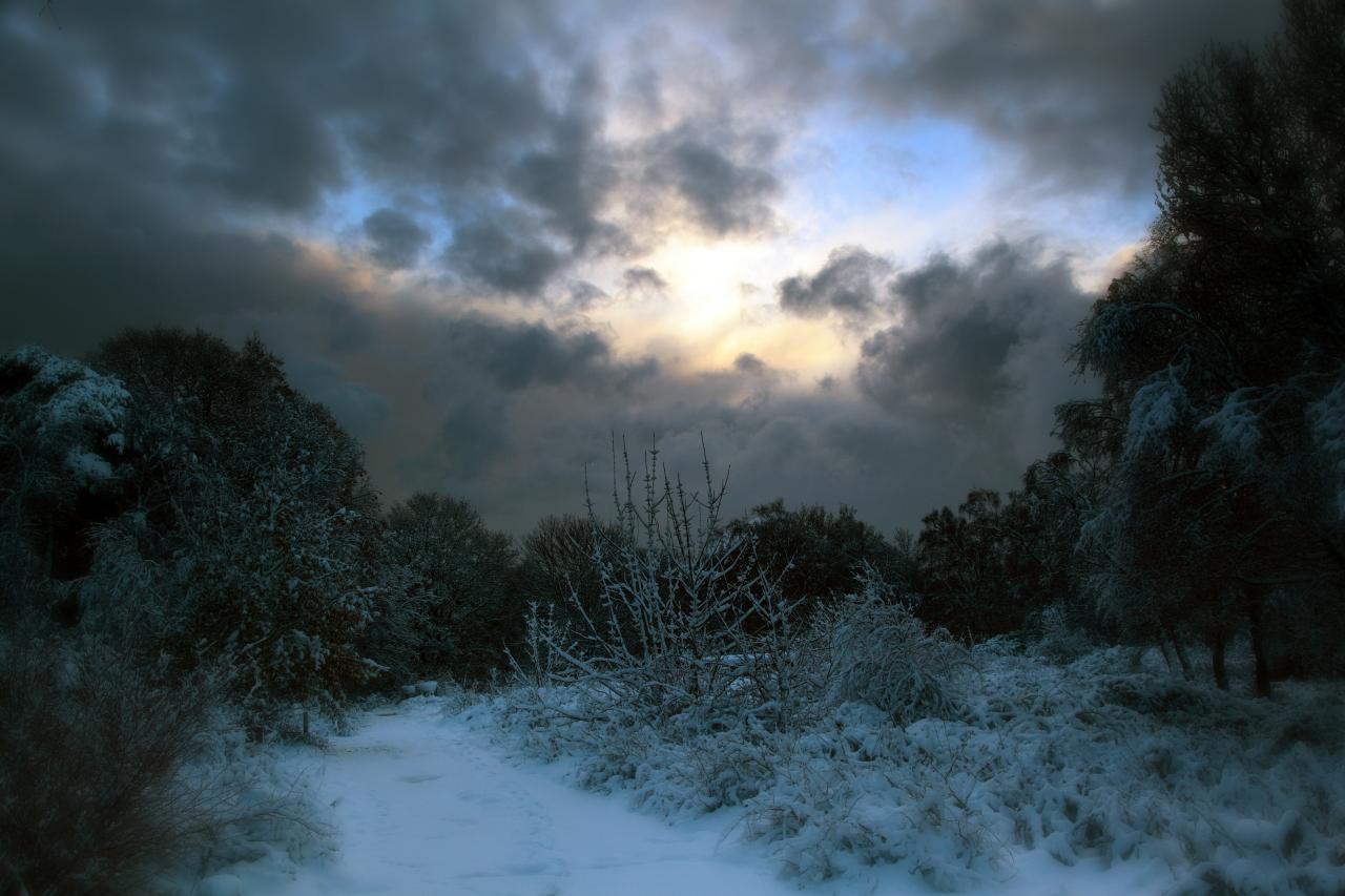 dark_winter_morning_by_scotto-d34laxr