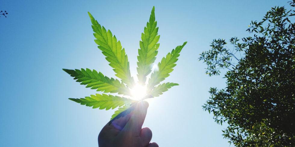landscape-1491476681-cannabis-droghe-leggere-rischi-effetti