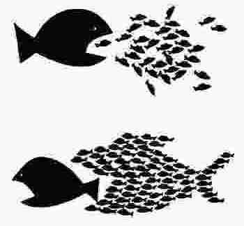 Capitalismo e idolatria del migrante