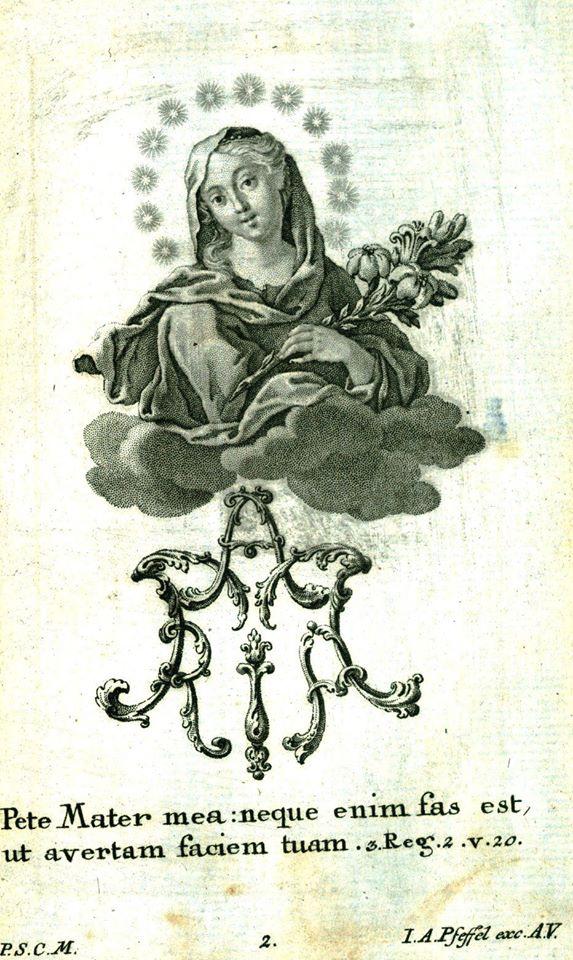 [DIFUNDE TU FE CATOLICA] Tradicional Novena a la Inmaculada Concepción de María Nuestra Reina y Señora. Día 7