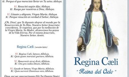 """[DIFUNDE TU FE CATOLICA] EL """"REGINA CAELI"""", la Oración Pascual de Nuestra Santa Madre"""