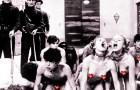 Cosa si nasconde dietro gli eventi porno nei club berlinesi?