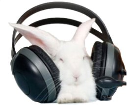 easter_bunny_headphones