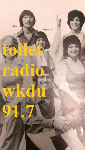 toilet radio