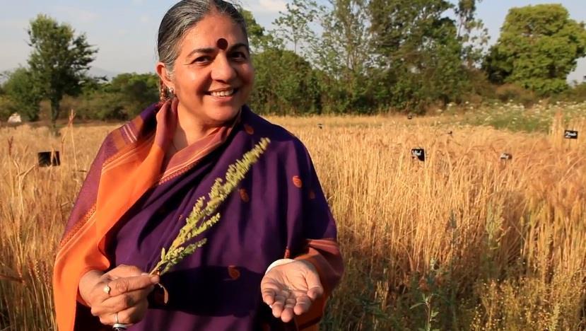 Resultado de imagen de fotos Bija Vidyapeeth (Escuela de la Semilla)
