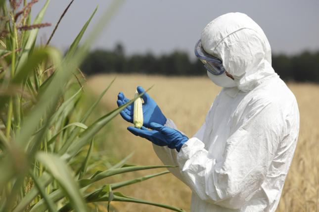 los pesticidas causan disfunción eréctil