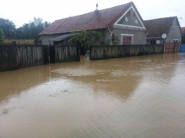 inundatii Sacosu Mare 13