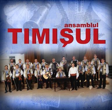 Orchestra Timisul