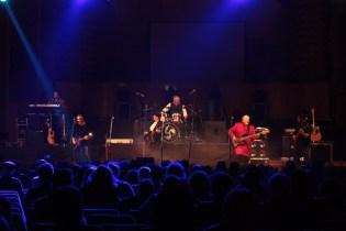 pasarea rock tm (71)