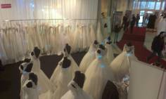 Nunta targ de nunti mirese Timisoara (10)