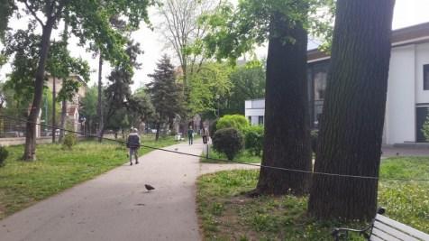 cablu parcul poporului (5)