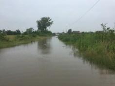 inundatii sacalaz 28.06 (3)