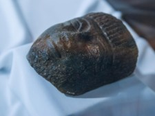 antichitati egiptene muzeul banatului (5)