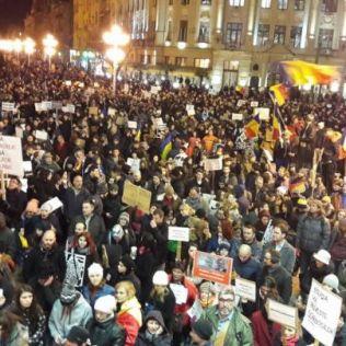 protest tm 2.02 4