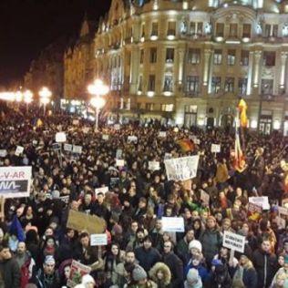protest tm 2.02 6