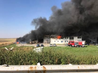 incendiu Sag ISU Timis (2)
