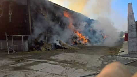 incendiu ferma 4.08.17 8