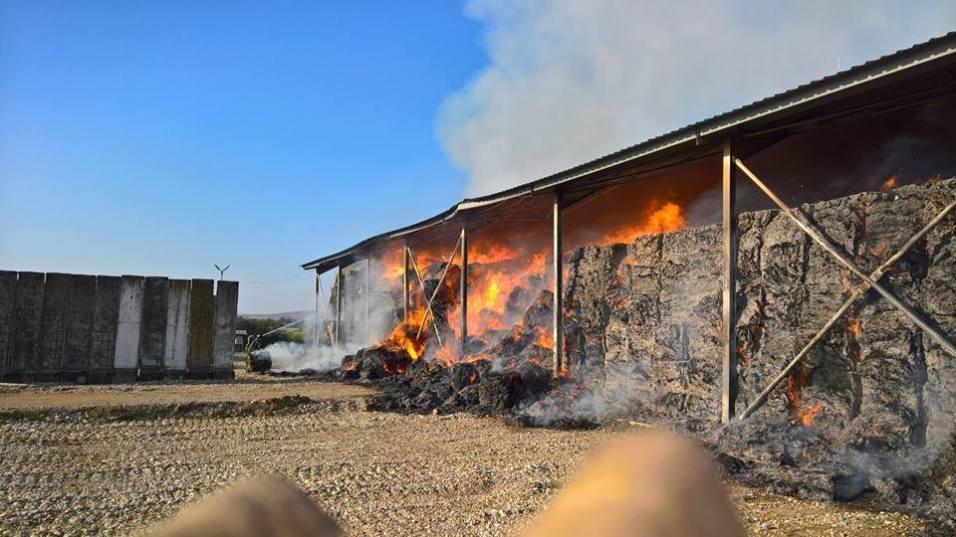 incendiu ferma 4.08.17 9