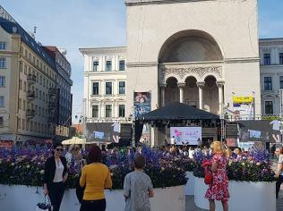 Timfloralis Piata Victoriei 2018 (11)