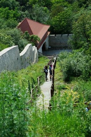 180529_1729 Cetatea Deva DSC13299