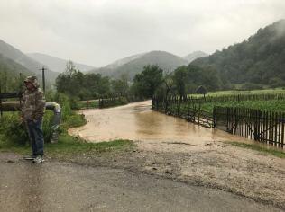 inundatii Timis iunie 2018 (3)