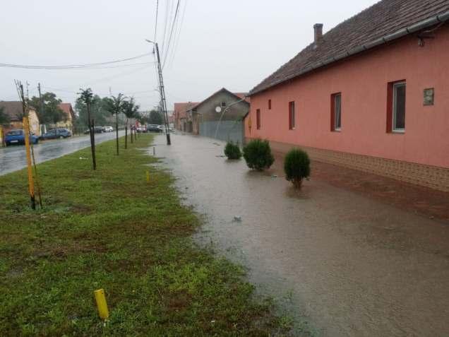 inundatii sannicolau mare (10)